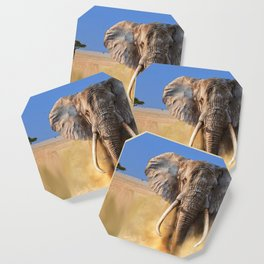 Charging bull elephant Coaster