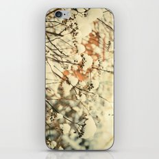 Vintage bush in the Snow iPhone & iPod Skin