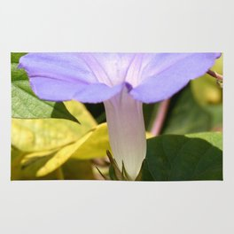 Purple Morning Glory Rug