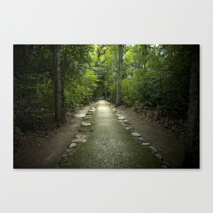 Mayan Path Canvas Print