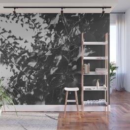 Shadows and Highlights Wall Mural
