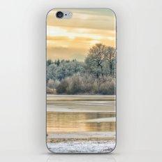 Walk on the winter lake iPhone & iPod Skin