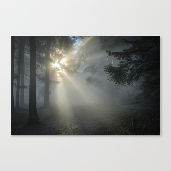 Winter Sunrise in the Forest Canvas Print