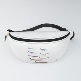 Airplanes of the world Fanny Pack