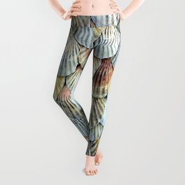 Cockleshell Collection Leggings