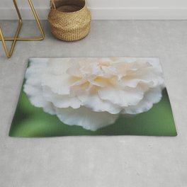 Garden Rose - Flower Photography Rug