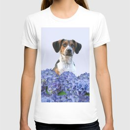 Hydrangea Blossoms  - Jack Russell terrier Dog T-shirt