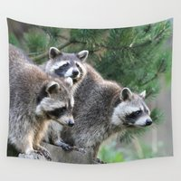 racoon Wall Tapestries featuring Racoon 001 by jamfoto
