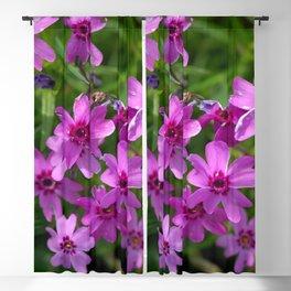 Flowers Izby Garden 6 Blackout Curtain