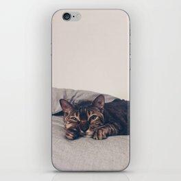 Caturday iPhone Skin