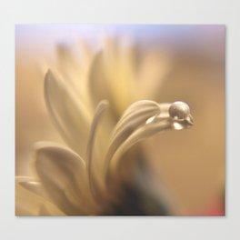 Waterbead Canvas Print
