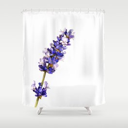Mediterranean Lavender on White Shower Curtain