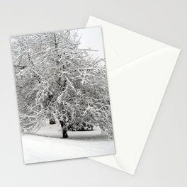 Snow-Covered Apple Tree Stationery Cards