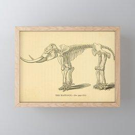 Vintage Print - The Canadian Naturalist and Geologist (1856) - The Mastodon Framed Mini Art Print