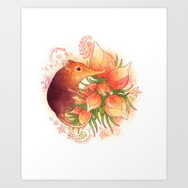 Pollinator Animals- Elephant Shrew Art Print