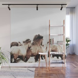 WILD AND FREE 2 - HORSES OF ICELAND Wall Mural