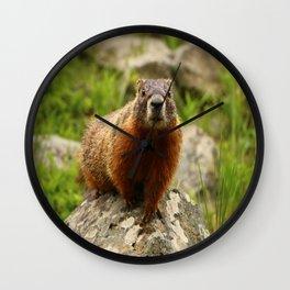 On The Rocks Marmot Wall Clock