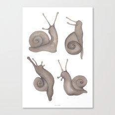 snail crew Canvas Print