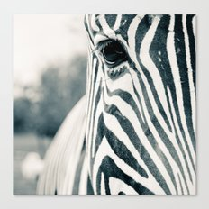 Zebra Face Black & White Canvas Print