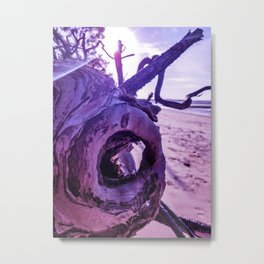 Sun kissed - Toogoom Beach Metal Print