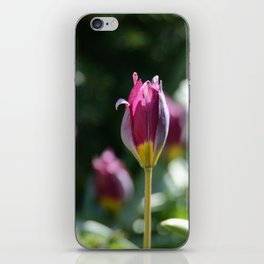 Sprouting Beauty iPhone Skin