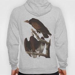 Turkey buzzard, Birds of America, Audubon Plate 151 Hoody