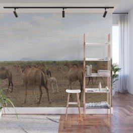 horse by Deborah Dunbar Wall Mural