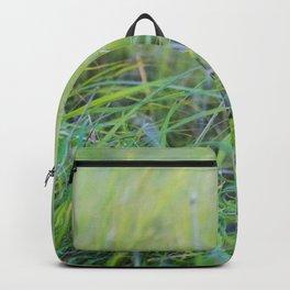 Dewey Pastures Backpack
