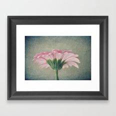 Flat Pink Gerbera Textured Framed Art Print