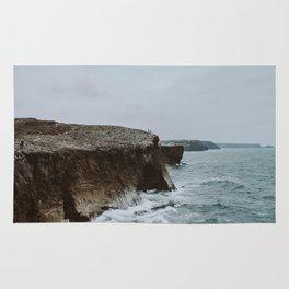 summer coast Rug