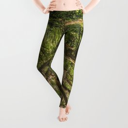 Spirits inside the wood Leggings