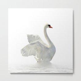 WHITE ON WHITE-BEAUTIFUL SWAN Metal Print