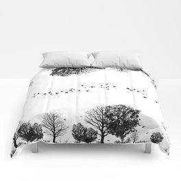 black forrest Comforters