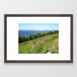New England Framed Art Print