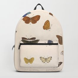 Vintage Hand Drawn Scientific Illustration Insects Butterfly Anatomy Colorful Wings Backpack