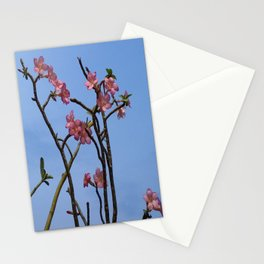 PINK SPLENDOUR Stationery Cards