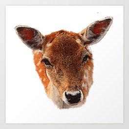 Deer canvas, spring, animals forest, nature Art Print