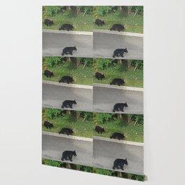 3 little bears Wallpaper