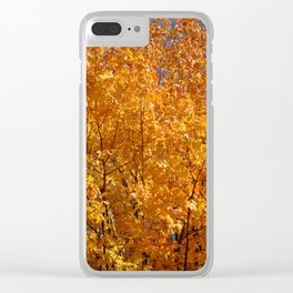 Sunkissed Clear iPhone Case