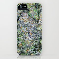 Dedicated Medicator pt.2 (Purple strain) iPhone (5, 5s) Slim Case