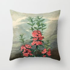 Pink Floral The Narrow-leaved Kalmia : Temple of Flora Throw Pillow