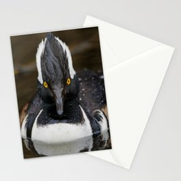 Floating Hooded Merganser Stationery Cards