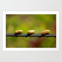 peanuts Art Prints featuring Peanuts by lenomadecom