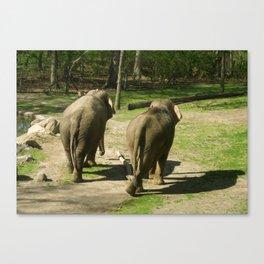 Elephant Buddies Canvas Print
