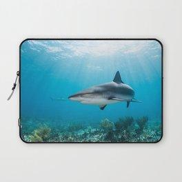 Caribbean reef shark Laptop Sleeve