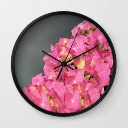 Pink flowers (Hydrangea) Wall Clock
