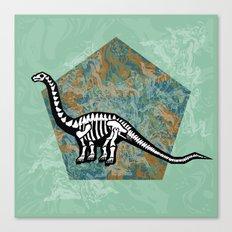 Brachiosaurus Fossil Canvas Print