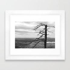 Good ol Nature Framed Art Print