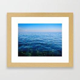 Blue beach coral Framed Art Print