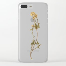 Wild gold and violet flowers Clear iPhone Case